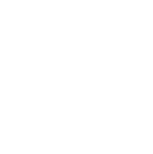 connessioni tra persone